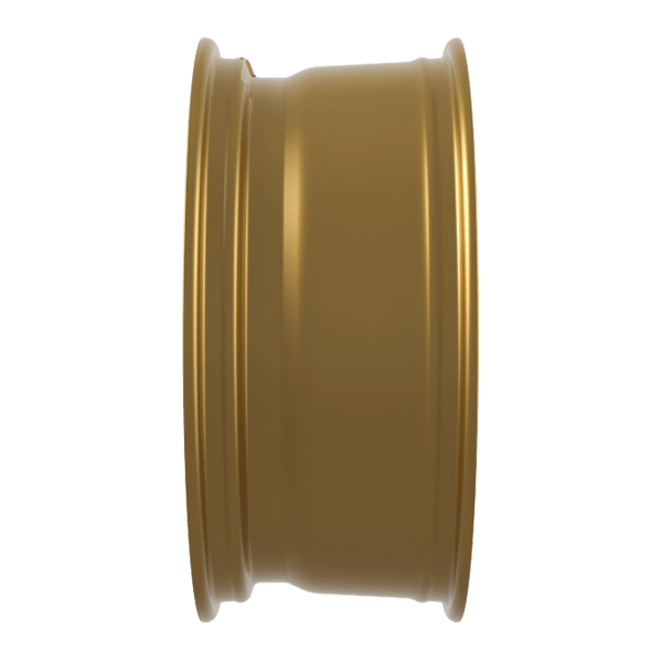 CMS-c25-gold-3d01